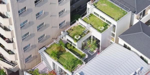 创造'绿色',东京层叠花园宅 / MAMM DESIGN